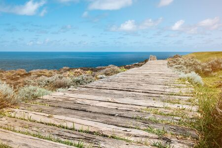 wooden walkway near ocean coast 写真素材