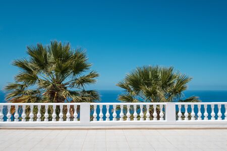 ocean view terrace with blue sky and palm tree background