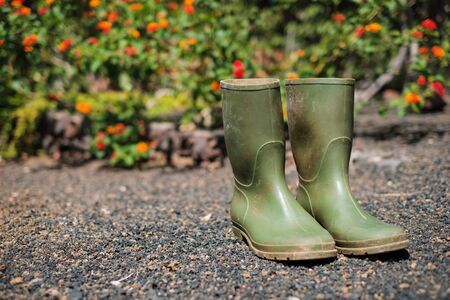 green rubber boots in garden with flower background