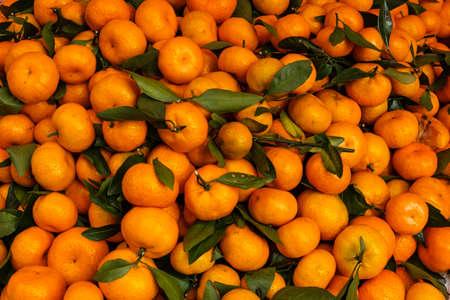 pile of tangarine fruits on fruit market Stock Photo