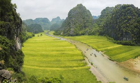 Rice field in Tam Coc, Ninh Binh, Vietnam Stock Photo