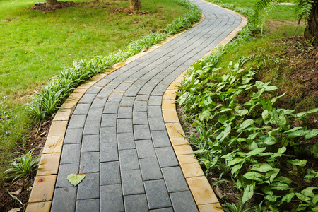 Curve walking path in park
