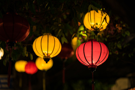 Lanterns hanging on tree