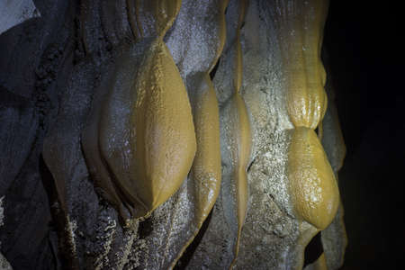stalagmites: Stalactite formations against green cave entrance in Son Doong Cave, the largest cave in the world in UNESCO World Heritage Site Phong Nha-Ke Bang National Park, Quang Binh province, Vietnam Stock Photo