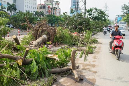 Hanoi, Vietnam - June 14, 2015: Fallen tree damaged on street by natural heavy wind storm in Tam Trinh street Editorial