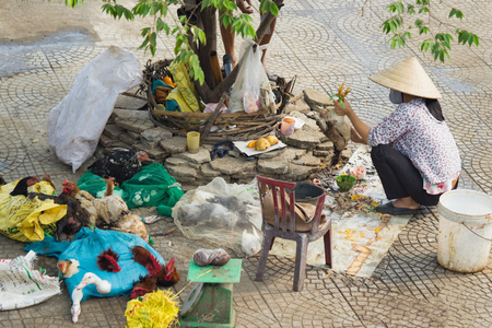 unhygienic: Hanoi, Vietnam - Oct 25, 2015: Vietnamese woman kills chicken on sidewalk next to Long Bien market. Concept of unhygienic raw foods and bad working condition