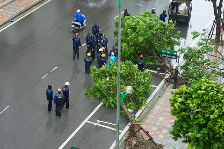 Hanoi, Vietnam - July 28, 2016: Tree fall in storm in Hanoi street. Workers wearing raincoat working to remove the tree for traffic