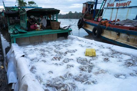 Tac カウ漁港、私香港デルタ州の...