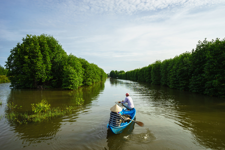 Mangrove forest with fishing boat in Ca Mau province, Mekong delta, south of Vietnam Banco de Imagens
