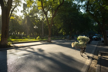 sulight: Hanoi street in early morning with yellow sunlight and daisy flower vendor cycling Stock Photo