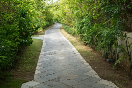 Villa path way at the tropical resort