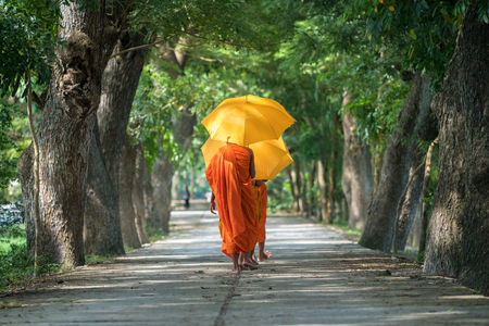 Monks in saffron robe and umbrella walking on rural road among trees in Mekong Delta, Vietnam Stockfoto