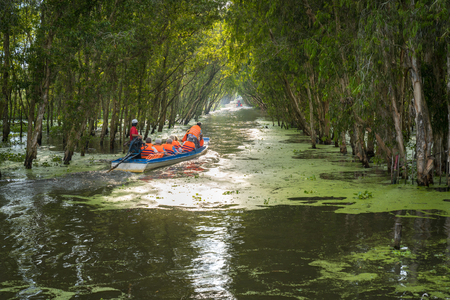 Tourism motorboat in cajuput forest in floating water season in Mekong Delta, Can Tho, Vietnam Stockfoto