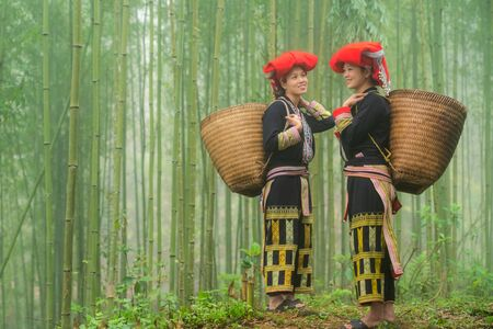 Vietnamese ethnic minority Red Dao women in traditional dress and basket on back in misty bamboo forest in Lao Cai, Vietnam Stock fotó