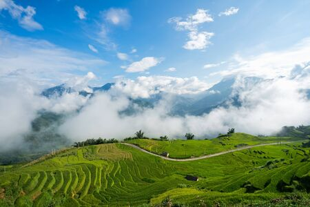 Terraced rice field landscape with low clouds in Y Ty, Bat Xat district, Lao Cai, north Vietnam Reklamní fotografie