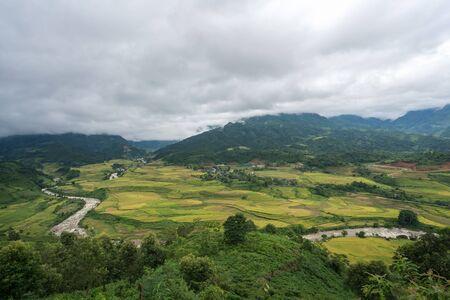 Terraced rice field landscape in harvesting season in Y Ty, Bat Xat district, Lao Cai, north Vietnam