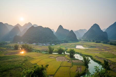 Rice field in Trung Khanh, Cao Bang, Vietnam Banque d'images