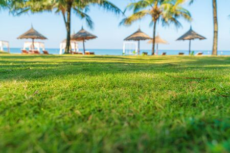 Grass ground by tropical beach with palm tree and leaf umbrellas on background Imagens