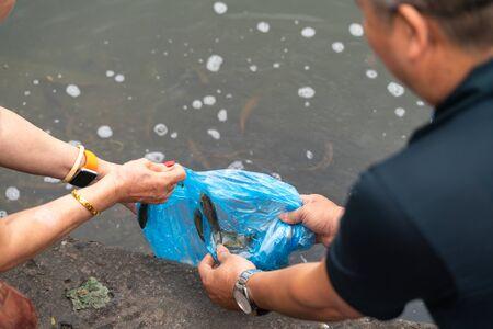 Hands releasing fishes to lake in Hanoi, Vietnam