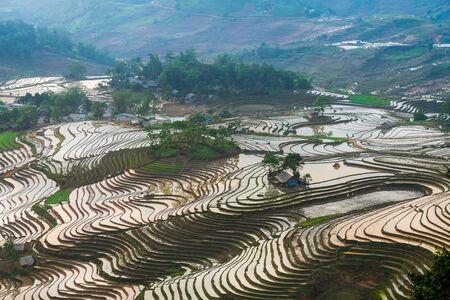 Terraced rice fields in water season in Lao Cai, northern Vietnam Stockfoto