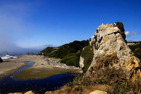view along the Oregon coast