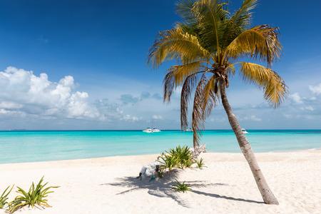 Caribbean paradise beach on Isla Mujeres, Yucatan, Mexico Stock Photo