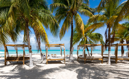 Luxurious sunbeds under palm trees on a caribbean beach in Mexico