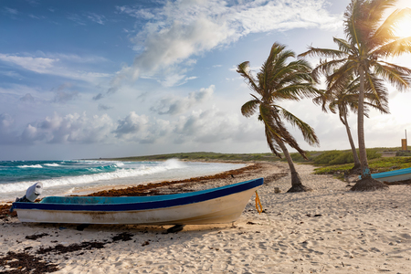 Palm trees and fisher boats on the Playa Publica beach on Cozumel island, Yucatan, Mexico