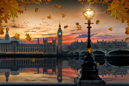 Autumn in London: golden sunset behind the Westminster Palace by the Thames river with falling autumn leafs from the trees in front, United Kingdom Imagens