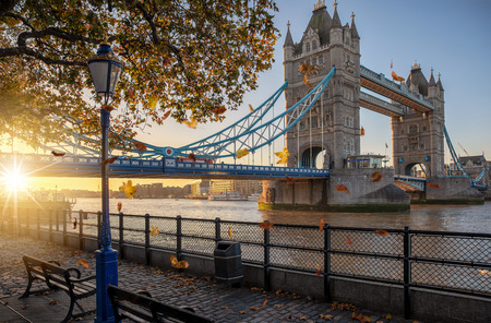London in autumn season: golden sunrise behind the Tower Bridge with falling leafs in front, United Kingdom Фото со стока