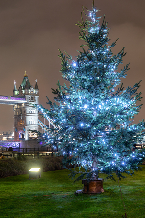 View to the Tower Bridge in London with a Christmas tree in front during the festive season, United Kingdom Фото со стока