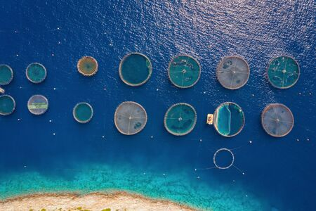 Aerial top down view of the geometrical shaped nets of a fish farm in the blue, Mediterranean sea in Greece
