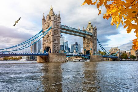 London in autumn concept: the iconic Tower Bridge on a cloudy afternoon with reflections in the water and golden leaves in front, UK