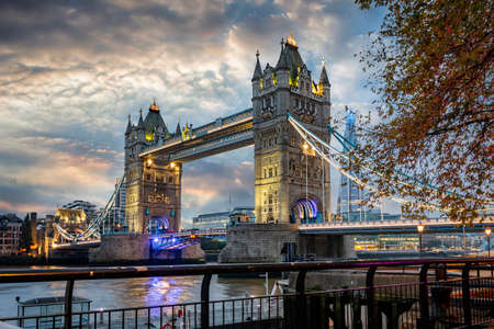 Autumn sunrise view to the illuminated Tower Bridge of London, United Kingdom, with a tree with golden leafs in front