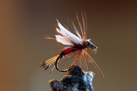 fishing lure: Macro shot of a red dry fly fishing lure used for trout fishing