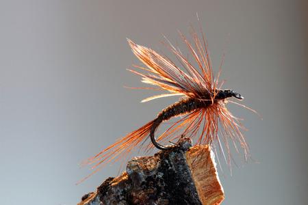 茶色のドライフライ釣りルアーのマクロ撮影