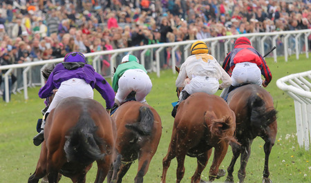 STOCKHOLM - JUNE 06: Rear view of four race horses in a curve at the Nationaldags Galoppen at Gardet. June 6, 2015 in Stockholm Editorial