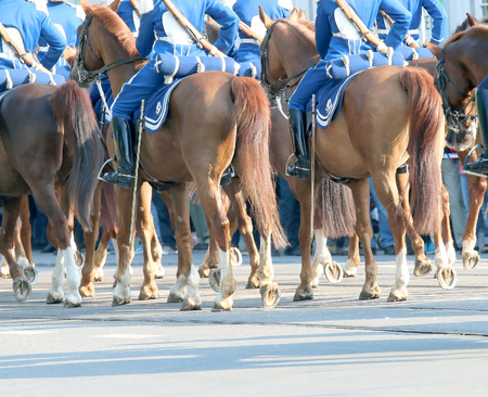 royal family: STOCKHOLM - JUN 06, 2015: The Royal guards in blue dresses on the horse back protecting the swedish royal family on their way to celebrate the swedish national day