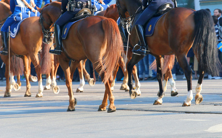 STOCKHOLM - JUN 06, 2015: The Royal guards in blue dresses on the horse back protecting the swedish royal family on their way to celebrate the swedish national day