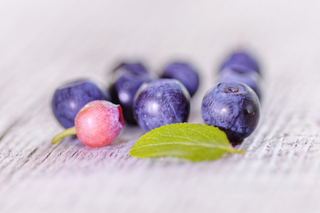 Closeup of a group of blueberies on a gray backgrund. One of the berries is unripe Stock Photo