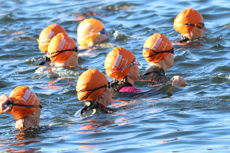woman squirt: STOCKHOLM - AUG 23, 2015: Group of triathletes wearing orange bathing caps waiting for the start in the water at ITU World Triathlon event in Stockholm, 2015 Editorial