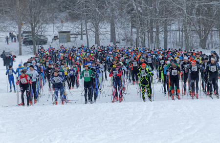 start to cross: STOCKHOLM - JAN 24, 2016: Large group colorful cross country skiers waiting for the start signal at the Stockholm Ski Marathon event January 24, 2016 in Stockholm, Sweden