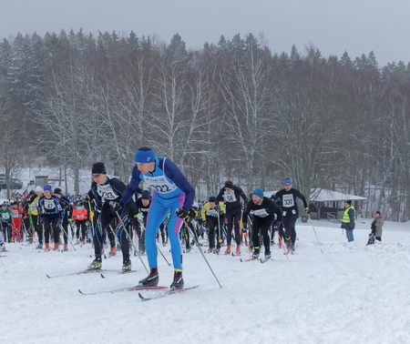 start to cross: STOCKHOLM - JAN 24, 2016: Large group of fighting male cross country skiers after the start at the Stockholm ski marathon event January 24, 2016 in Stockholm, Sweden