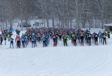 start to cross: STOCKHOLM - JAN 24, 2016: Start moment of a large group colorful cross country skiers at the Stockholm Ski Marathon event January 24, 2016 in Stockholm, Sweden Editorial