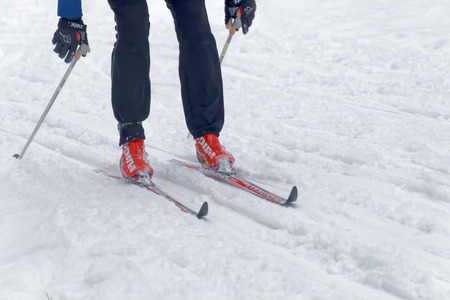 cross legs: STOCKHOLM - JAN 24, 2016: Close up of colorful skies, feet, hands, and legs of a cross country skier at the Stockholm Ski Marathon event January 24, 2016 in Stockholm, Sweden
