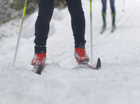 cross legs: STOCKHOLM - JAN 24, 2016: Close up of colorful skies, feet and legs of two cross country skiers at the Stockholm Ski Marathon event January 24, 2016 in Stockholm, Sweden
