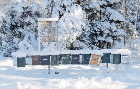 postmail: Many post boxes covered with snow in a row Stock Photo