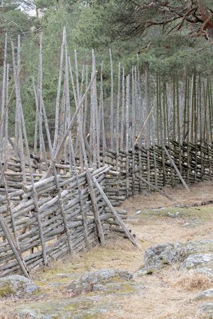 then: Traditional fence on then swedish countryside made of spruce tree