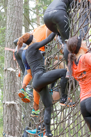 woman run: STOCKHOLM, SWEDEN - MAY 14, 2016: Group of woman climbing up a net in the obstacle race Tough Viking Event in Sweden, May 14, 2016