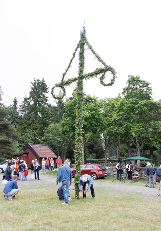 midsummer pole: VADDO, SWEDEN - JUNE 23, 2016: Men fixate the maypole after raising it before the dancing starts, celebrating the Midsommer in Sweden, June 23, 2016